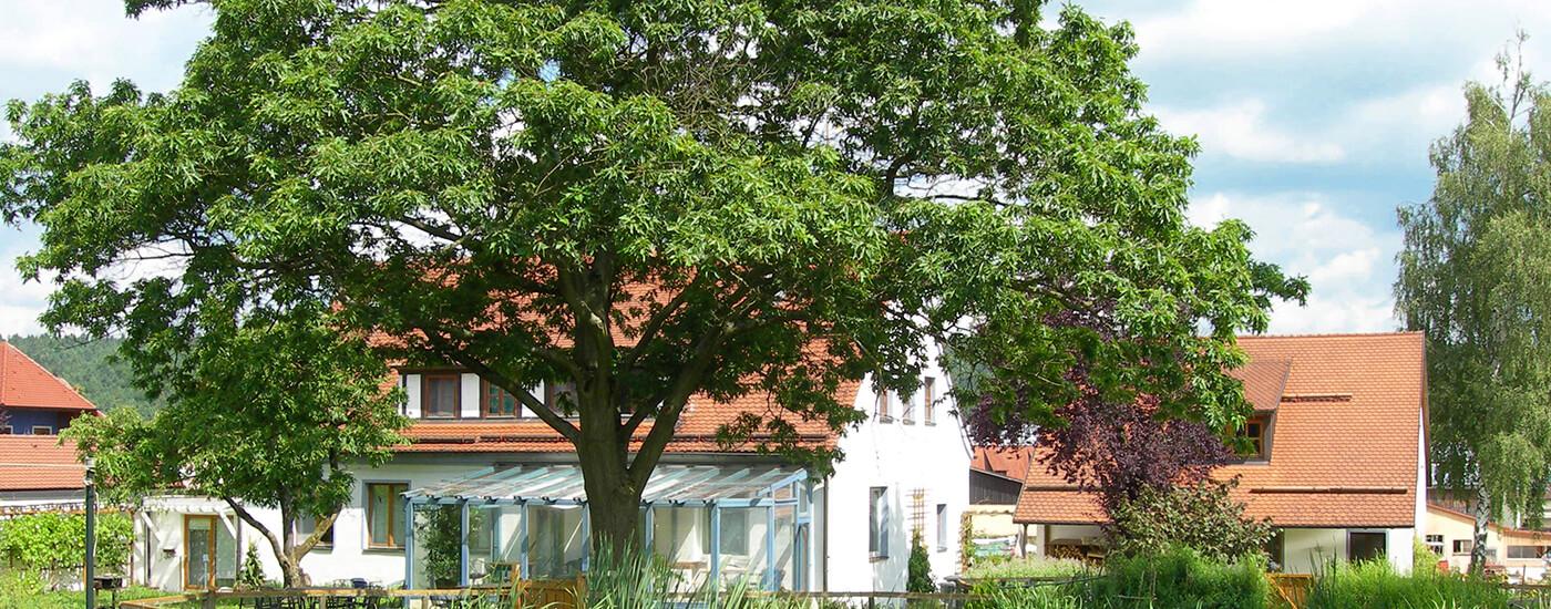 Seminarhaus Wolfsfeld - Irmgard Maas in Zusammenarbeit mit der Gesundheitspraxis Maas